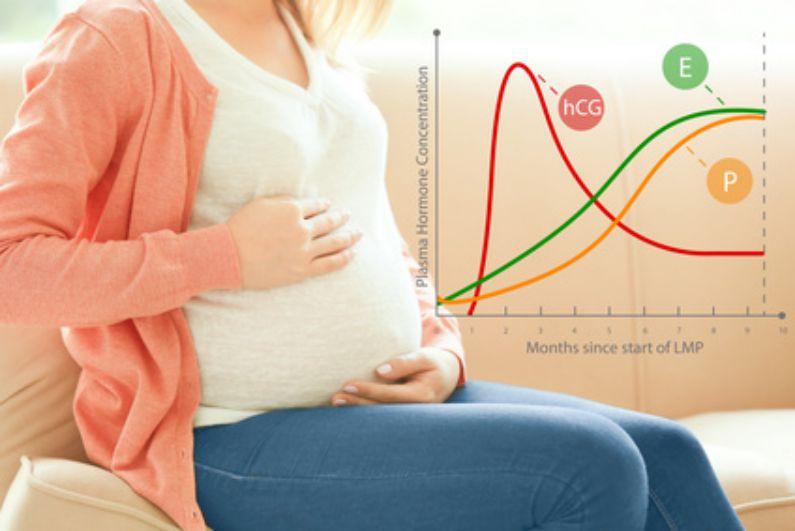 Wie genau ist die Schwangerschaft von lmp