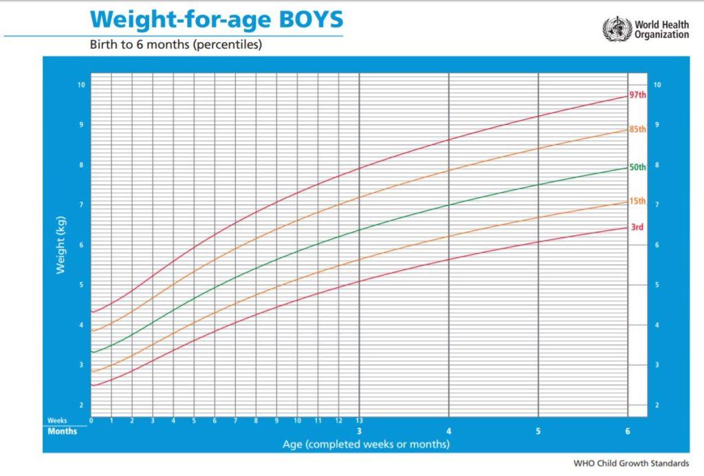 WHO Gewichtskurve für Jungs 0 - 6 Monate